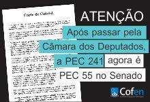 destaque_pec55